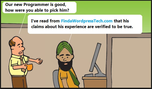 Find a wordpress developer comic