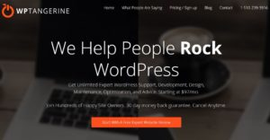 WP Tangerine Offers Trustworthy WordPress Services